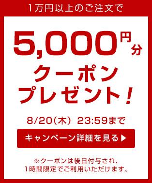 5000yen_coupon_pb_m_20150818
